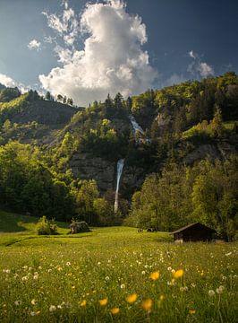 Wasserfall Dundelbach von Niels Tichelaar