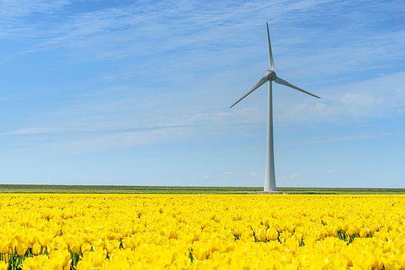 Windmolen met tulpen van Sjoerd van der Wal