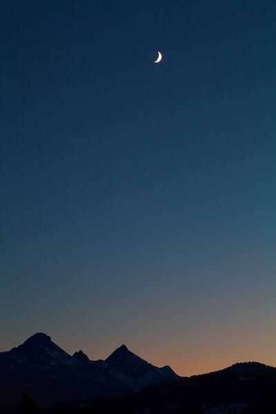 Tribute to the moon van Olha Rohulya