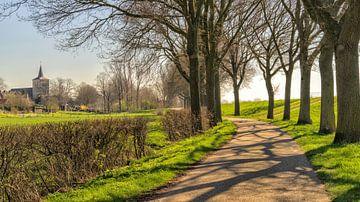 Landstraße zur Kirche von Middelaar von Jeroen Hoogakker