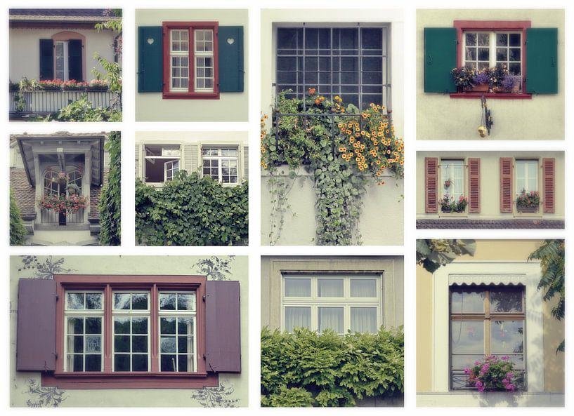 swiss windows van Ariadna de Raadt