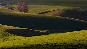 Golvend landschap van Ronny Rohloff
