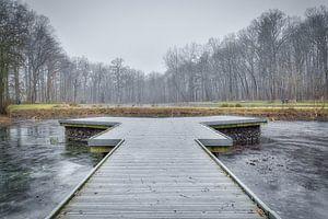 Nieuwenhoven van Filip Boogaerts