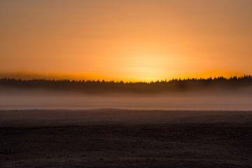 Edese heide , zonsondergang van Cilia Brandts