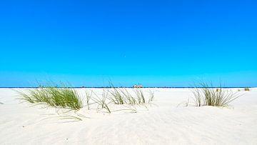 Marram Gras und Strandpavillon auf Schiermonnikoog von Jenco van Zalk