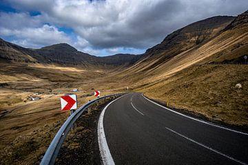 De weg naar Gásadalur van Michael Fousert