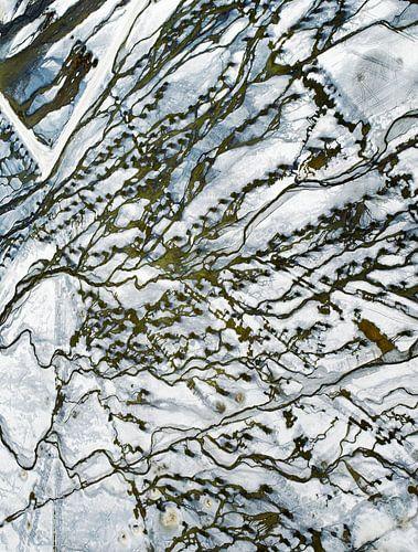Owens Dry Lake van Marco van Middelkoop