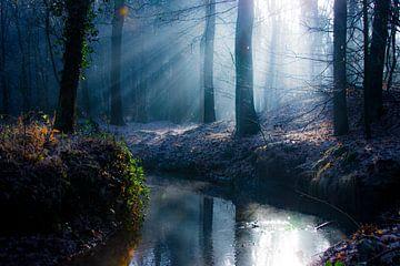 De Leij in magisch winterlicht van Hugo Braun