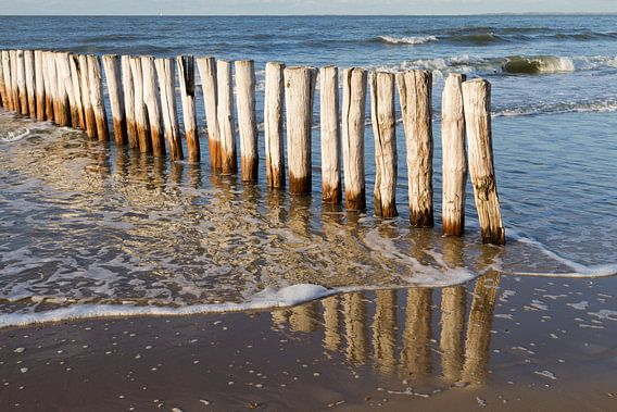 houten golfbreker palen bij kust Cadzand-bad - no. 2