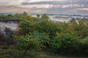 Duinlandschap in ochtendlicht met mist van Menno van Duijn