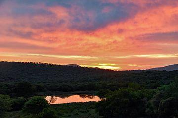 Sonnenuntergang Kwazulu natal von Hermineke Pijls