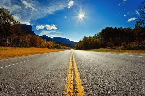 Jasper Road
