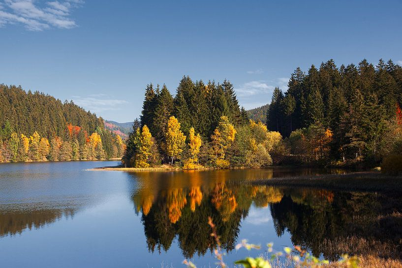 herfst landschap van jan van Welt