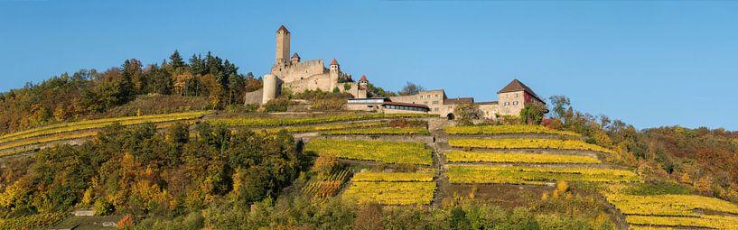 Burg Hornberg im Herbst von Uwe Ulrich Grün
