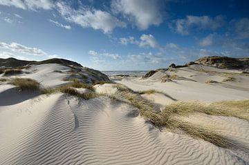 Zandsculpturen in de duinen bij de Kerf in Bergen aan Zee van Martin Jansen