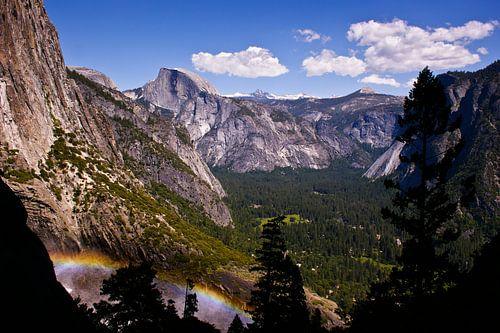 Yosemite National Park van