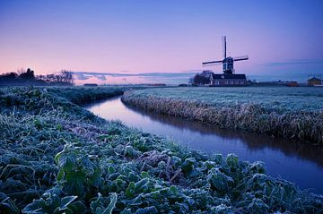 Cold Sunrise sur Martijn van der Nat