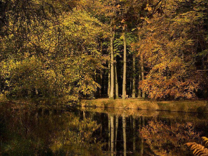 Herfstsfeer van Wendy Drent