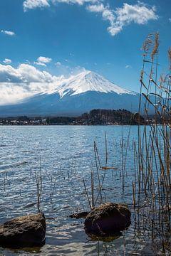 Iconisch Mount Fuji van Peter Leenen