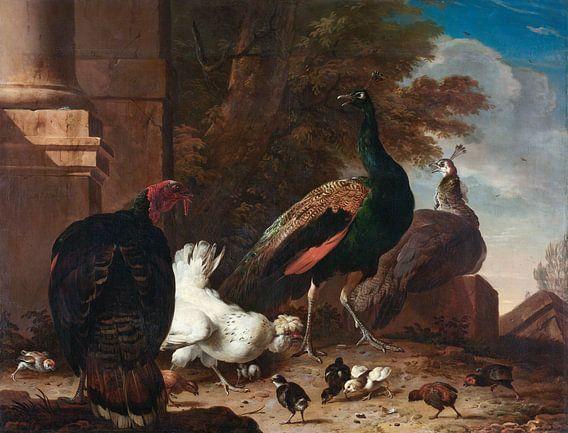 Een hen met pauwen en een kalkoen, Melchior d'Hondecoeter