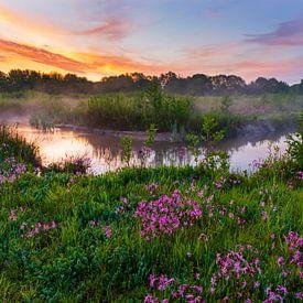 Frühlingslandschaft von Andrew George