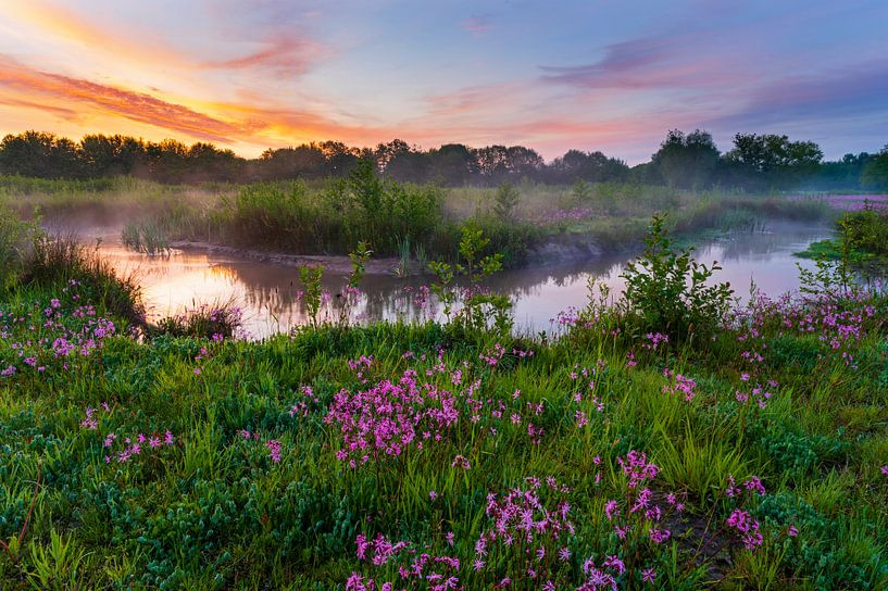 Lente landschap van Andrew George
