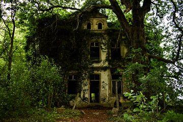 Villa Muhr van Marissa van Gils