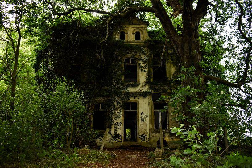 Villa Muhr von Marissa van Gils