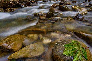 Stille stroom van MindScape Photography