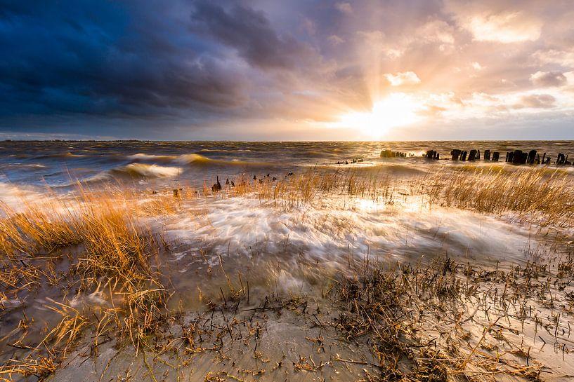 De zee neemt. van Ton Drijfhamer