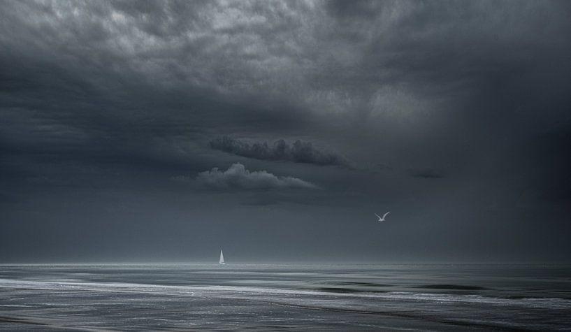 3590 Momente vor dem Sturm von Adrien Hendrickx