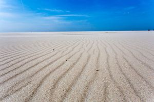 Zand en wind
