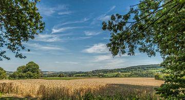 Zuid-Limburg in de zomer van