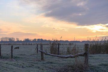 zonsopkomst over het koude landschap van Tania Perneel