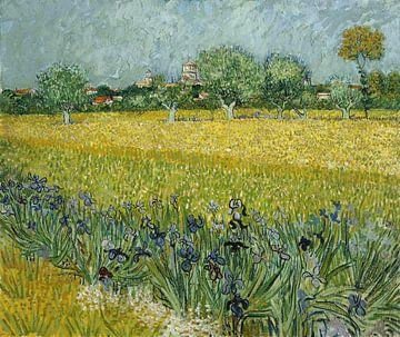 Feld mit Blumen in der Nähe von Arles - Vincent van Gogh von 1000 Schilderijen