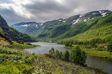 Rode huis langs de Aurlandselvi in Noorwegen van