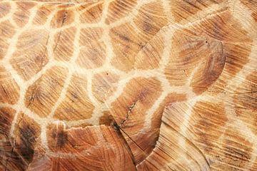 hout en giraffe von Martijn Wams