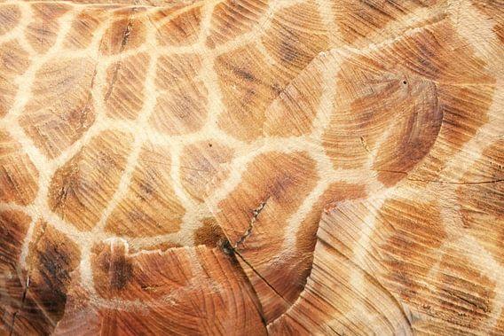 hout en giraffe