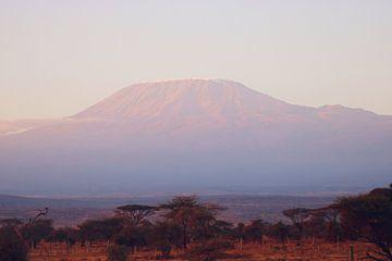 Kilimanjaro van