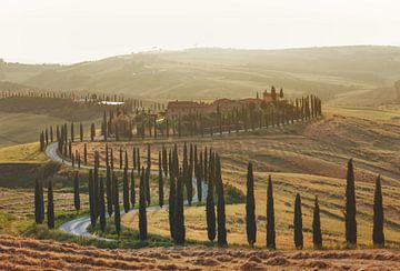 Wunderschöne toskanische Landschaft mit dem berühmten Farmhaus und von Zypressen umgebene Landstrass von Besa Art