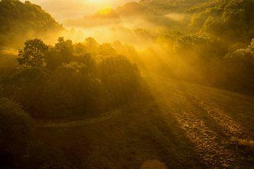 Zonnestralen tijdens het gouden uurtje in Toscane van Damien Franscoise