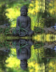 Meditation van