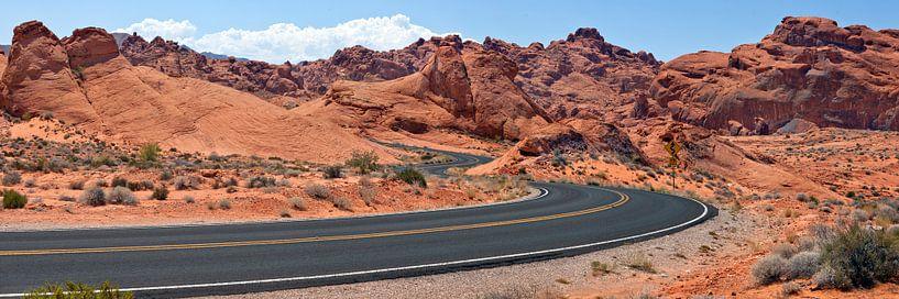 Country Road USA II van Melanie Viola