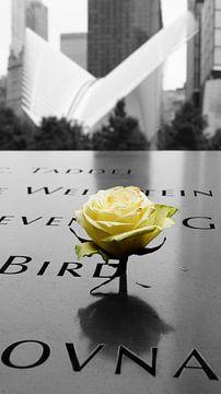 Roos bij een naam van het 9/11 memorial van ticus media