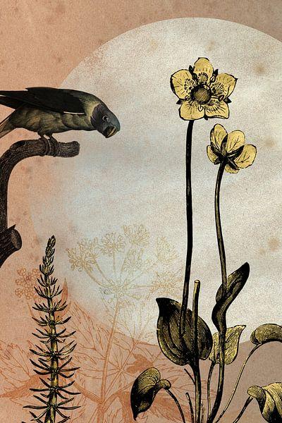 Papagei und Butterblumen von Jadzia Klimkiewicz