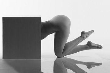 Artistieknaakt pose in een box von Arjan Groot
