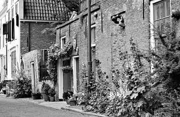 Middelburg van Jannie van den Bosse