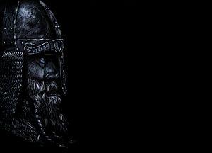 Vigilant Viking van