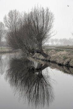 Winterse wilgen von Herman van den Berg