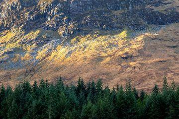 Herfstkleuren in de Schotse Hooglanden tijdens het lopen van de West Highland Way in de herfst van Guido Boogert